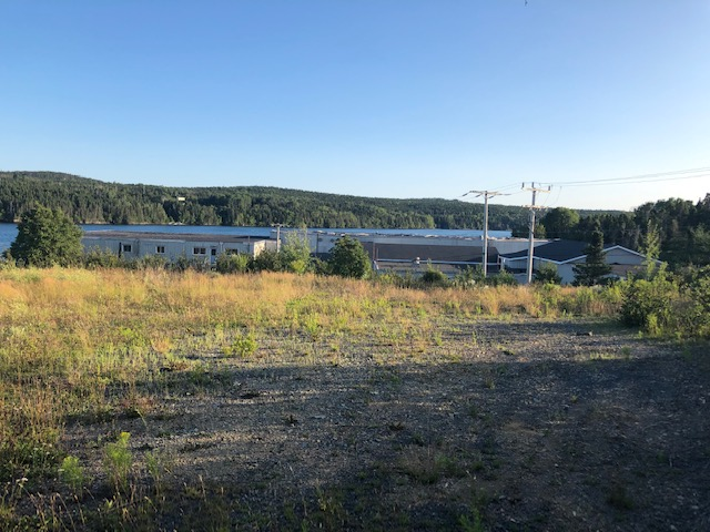 0 Main Road, Charleston, Newfoundland, Canada A0C 1K0, ,Commercial,For Sale,Main Road,3388