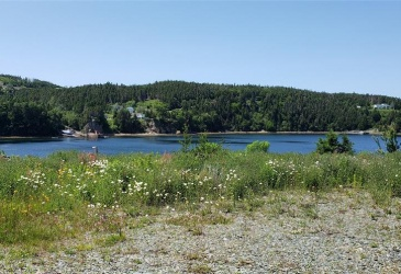44-46 WALSH'S ROAD, LITTLE BAY, Newfoundland, Canada A0E 2H0, ,Residential,For Sale,WALSH'S ROAD,3724