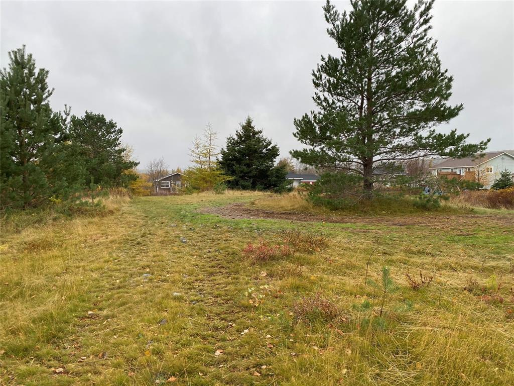 58 BARENEED ROAD, BAY ROBERTS, Newfoundland, Canada A0A 1X0, ,Residential,For Sale,BARENEED ROAD,3804